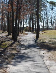 Clark Law Path