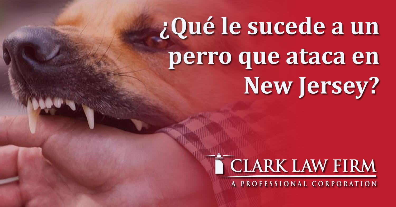 dog-attack-clark-law-sp